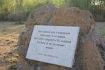 pier-paolo-pasolini-il-pianto-della-scavatrice_dale_zaccaria_blog