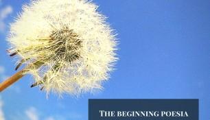 The Beginning poesia per piano solo - Il bianco e l'impuro